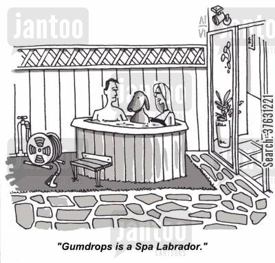 hot tub cartoon humor: 'Gumdrops is a Spa Labrador,'