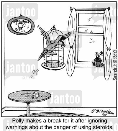 steroid abusers cartoon humor: Polly makes a break for it after ignoring warnings about the danger of using steroids.