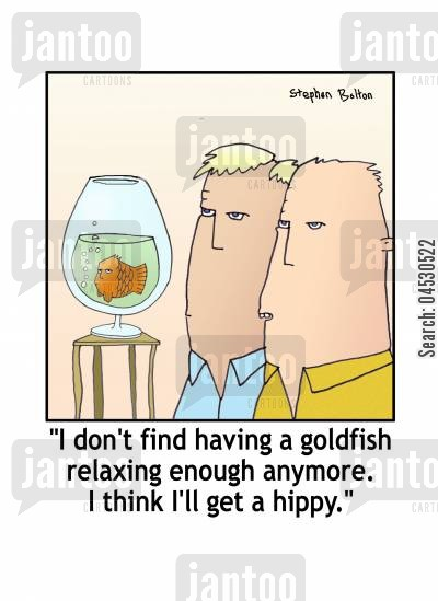 calm cartoon humor: I don't find having a goldfish relaxing enough any more. I think I'll get a hippy.