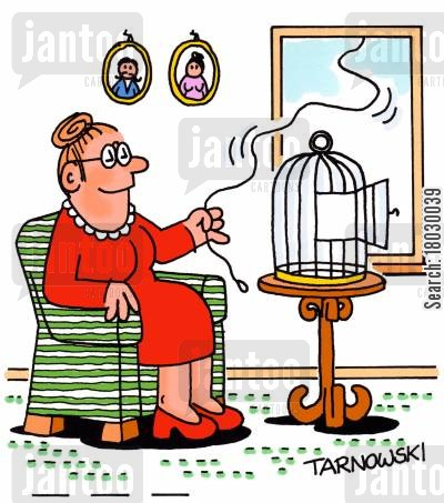 birdcage cartoon humor: Pet bird on a lead.