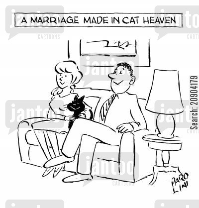 pussy cats cartoon humor: A marriage made in cat heaven.