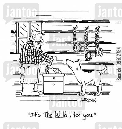 domesticated animals cartoon humor: 'It's The Wild, for you.'