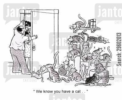 animal cruelty cartoon humor: 'We know you have a cat...'