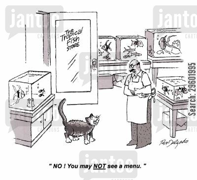 store owner cartoon humor: 'No you may NOT see a menu.'