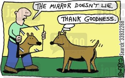 good looks cartoon humor: 'The mirror doesn't lie.' 'Thank goodness.'