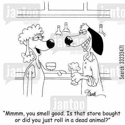 cologne cartoon humor: 'Mmmm, you smell good. Is that store bought or did you just roll in a dead animal?'