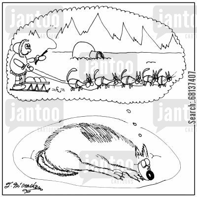 dogsled cartoon humor: A smiling husky dreams of a dog sled pulled by a bunch of cats.
