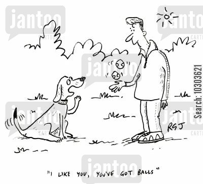 pet puppies cartoon humor: 'I like you, you've got balls.'