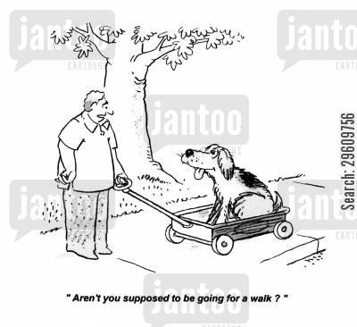 carts cartoon humor: 'Aren't you supposed to be going for a walk?'