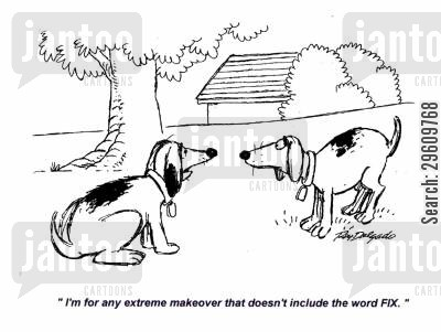fixing cartoon humor: 'I'm for any extreme makeover that doesn't include the word FIX.'