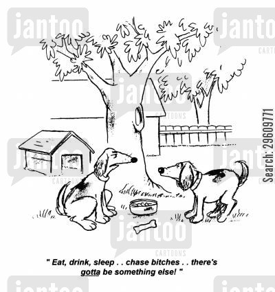 chasing cartoon humor: 'Eat, drink, sleep... chase bitches... there's gotta be something else!'