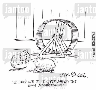 hamster cage cartoon humor: 'I can't use it...I can't afford the gym membership!'
