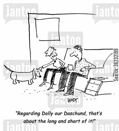daschund cartoon humor: Regarding Dolly our Daschund, that's about the long and short of it!