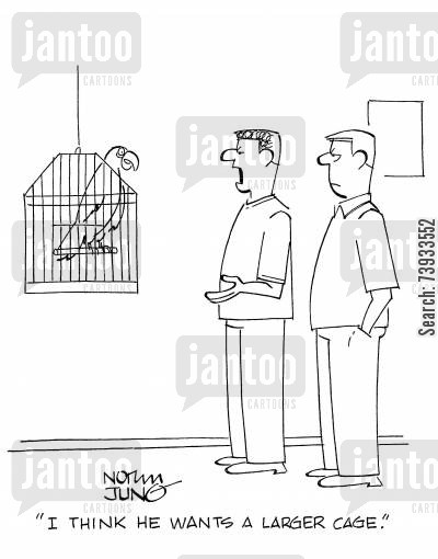 bird cages cartoon humor: 'I think he wants a larger cage.'