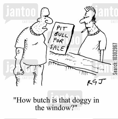 pitt bull dogs cartoon humor: 'How butch is that doggy in the window?'