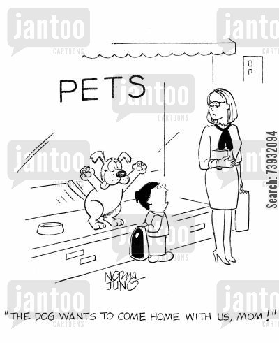 tricking cartoon humor: 'The dog wants to come home with us, mom!'