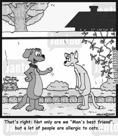 provokes cartoon humor: That's right: Not only are we 'Man's best friend', but a lot of people are allergic to cats...