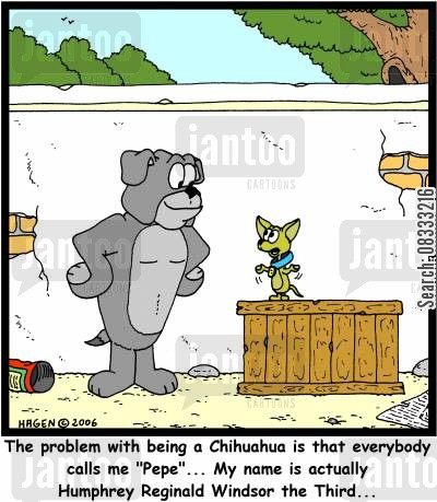 dogs name cartoon humor: 'The problem with being a Chihuahua is that everybody calls me 'Pepe'... My name is actually Humphrey Reginald Windsor the Third...'