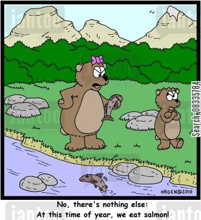 food choices cartoon humor: 'No, there's nothing else: At this time of year, we eat salmon!'