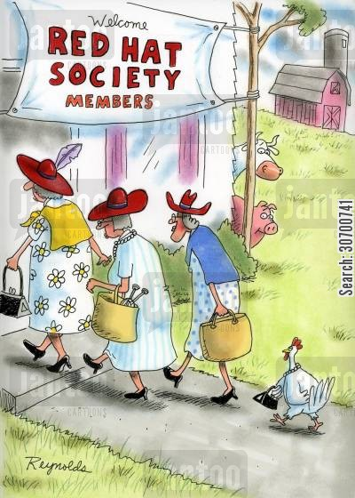 combs cartoon humor: Red Hat Society Members.