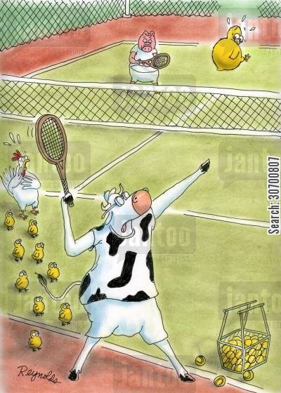 tennis balls cartoon humor: Cow picks up chick instead of tennis ball.