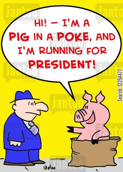 pig in a poke cartoon humor: 'Hi! -- I'm a pig in a poke, and I'm running for President!'