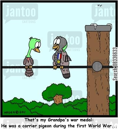 army medal cartoon humor: 'That's my Grandpa's war medal: He was a carrier pigeon during the first World War...'