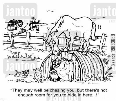 pigsty cartoon humor: 'They may well be chasing you, but there's not enough room for you to hide in here...!'