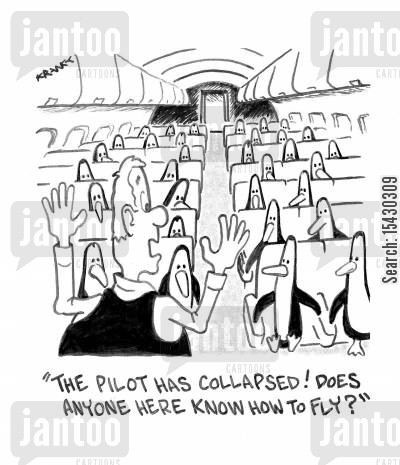 co-pilot cartoon humor: 'The pilot has collapsed! Does anyone here know how to fly?'