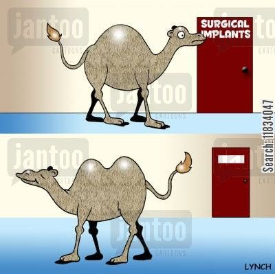 camel humps cartoon humor: Camel Visits the Plastic Surgeon