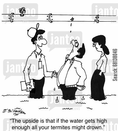 leaky pipe cartoon humor: 'The upside is that if the water gets high enough all your termites might drown.'