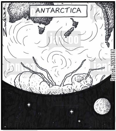 polar cap cartoon humor: Antarctica