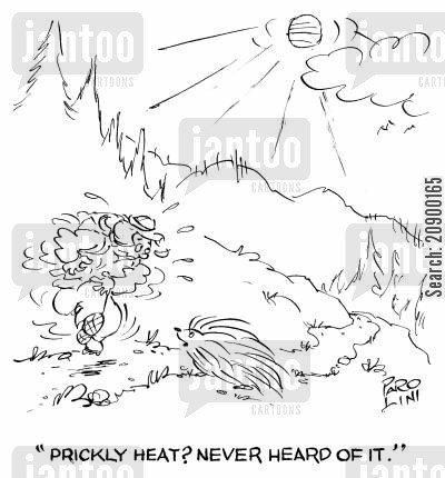spikes cartoon humor: 'Prickly heat? Never heard of it.'