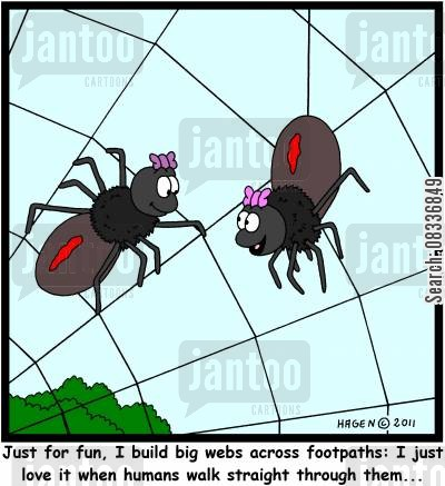 pavements cartoon humor: 'Just for fun, I build big webs across footpaths: I just love it when humans walk straight through them...'