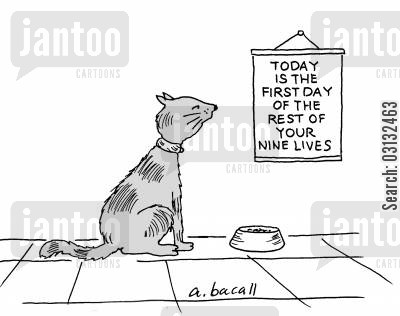 mantras cartoon humor: Today is the first day of the rest of your nine lives.
