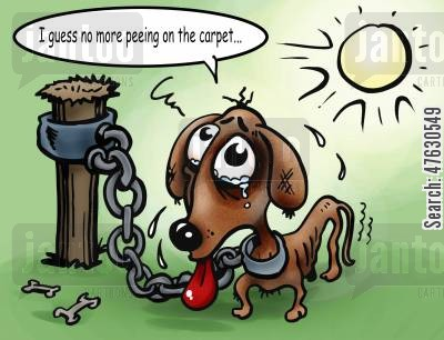 dogs life cartoon humor: Dogs life