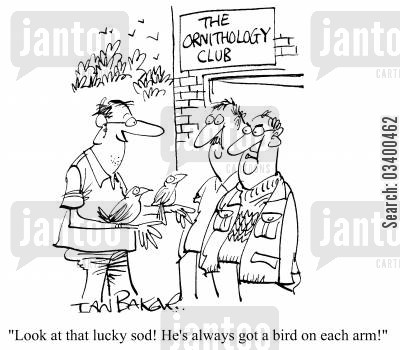 lookers cartoon humor: Look at that lucky sod! He's always got a bird on each arm!