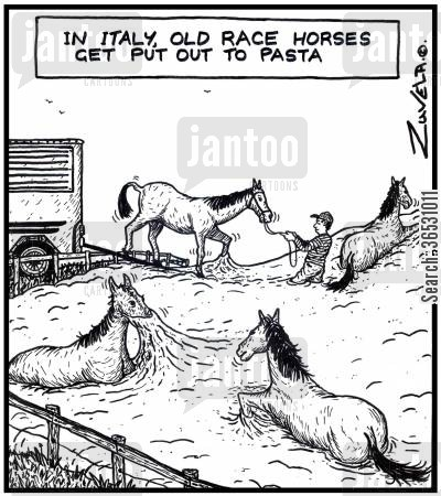 pastures cartoon humor: In Italy,old race horses get put out to pasta.