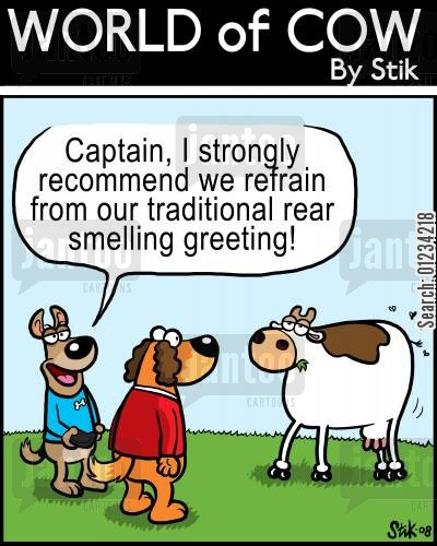 follow through cartoon humor: 'Captain, I strongly recommend we refrain from our traditional rear smelling greeting!'