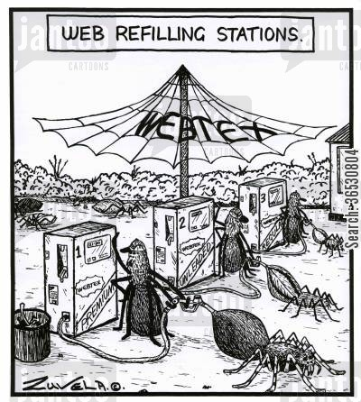 spider web cartoon humor: Web Refilling Stations.