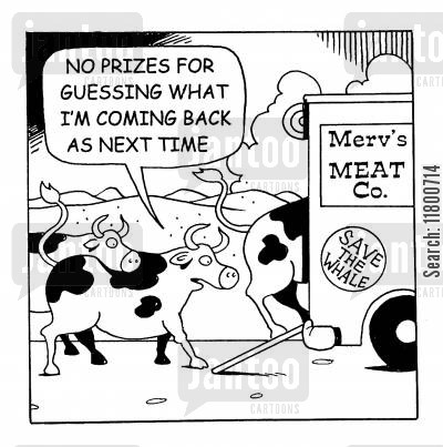 red meat cartoon humor: No prizes for guessing what I'm coming back as next time.