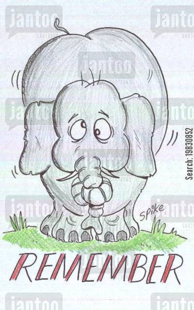 knot cartoon humor: Elephants never forget.