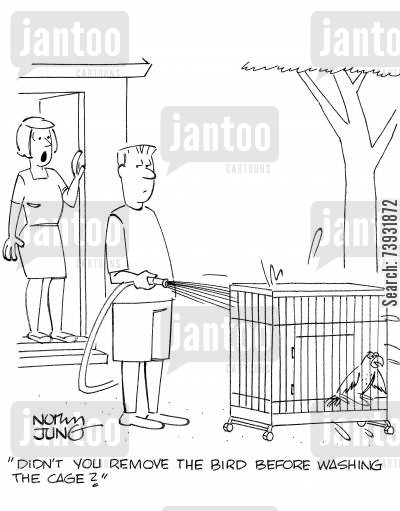 bird cages cartoon humor: 'Didn't you remove the bird before washing the cage?'