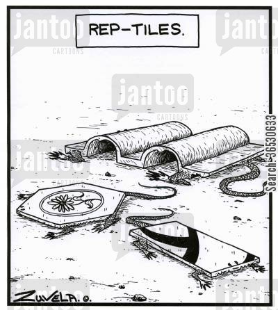 tiles cartoon humor: Rep-Tiles.