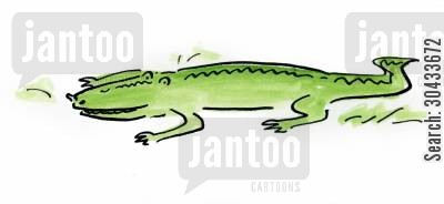 five cartoon humor: Crocodile