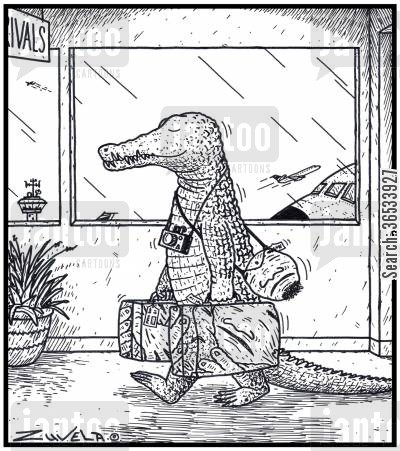 jaws cartoon humor: A Holidaying Crocodile has arrived at an Airport with his favourite Human-skin travel bags.