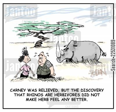 rhinos cartoon humor: Carney was Relieved, But the discovery that Rhinos are Herbivores did not make Herb feel any better.