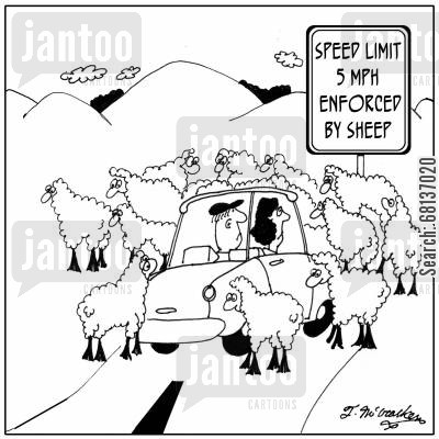 animal farm cartoon humor: Speed Limit 5 MPH. Enforced by Sheep.