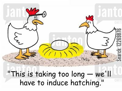 induce cartoon humor: 'This is taking too long - we'll have to induce hatching.'