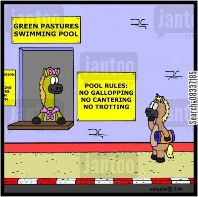 jockeys cartoon humor: Green Pastures Swimming Pool